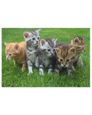 Cats Puzzle - LIMITED EDITION -  250 Piece Puzzle (horizontal) front