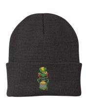 Frog Leprechaun Pot Of Gold Shamrock St Patrick's Knit Beanie thumbnail