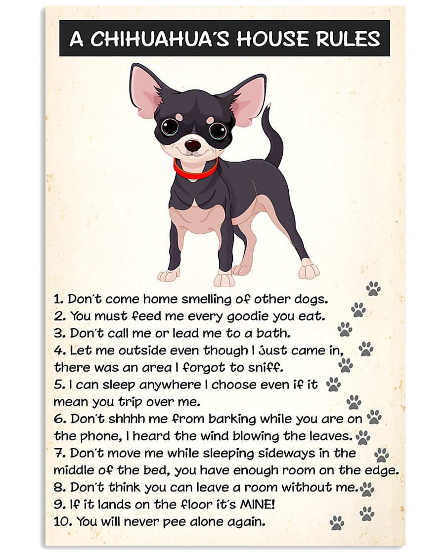 A CHIHUAHUAS HOUSE RULES 11x17 Poster