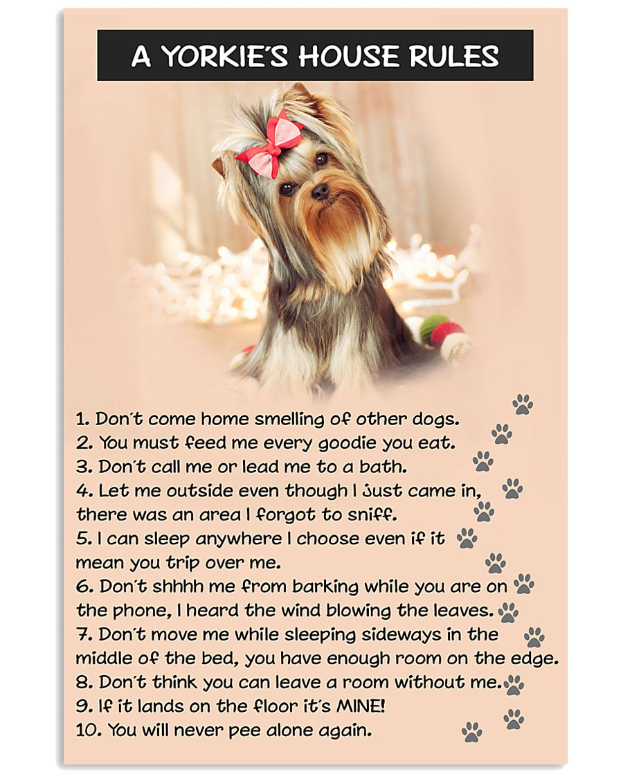 A YORKIES HOUSE RULES 11x17 Poster