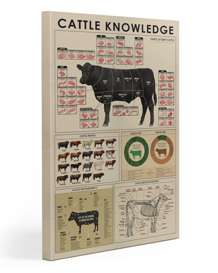 Cattle knowledge Art Canvas  20x30 Gallery Wrapped Canvas Prints