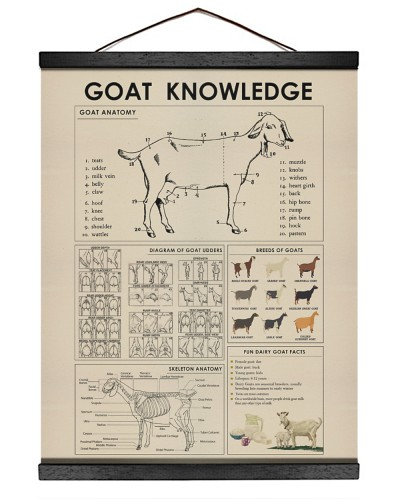 Goat Knowledge print canvas and poster