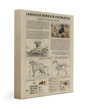 Labrador retriever Knowledge  11x14 Gallery Wrapped Canvas Prints thumbnail