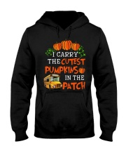 I carry the cutest pumpkins in the patch Hooded Sweatshirt tile