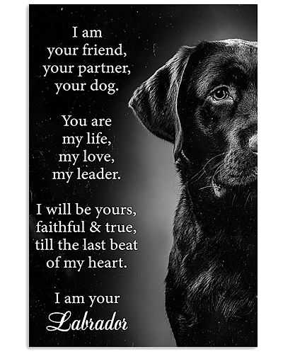 Labrador I Am Your Friend