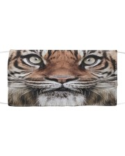 TIGER FACE Cloth face mask front