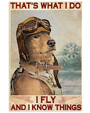 Golden Retriever i Fly 11x17 Poster front