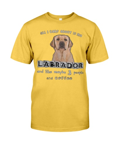 all I Care About is my Labrador