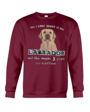 all I Care About is my Labrador  Crewneck Sweatshirt thumbnail