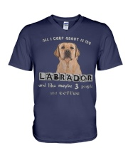 all I Care About is my Labrador  V-Neck T-Shirt thumbnail