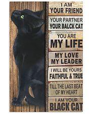 Cat Partner 11x17 Poster front