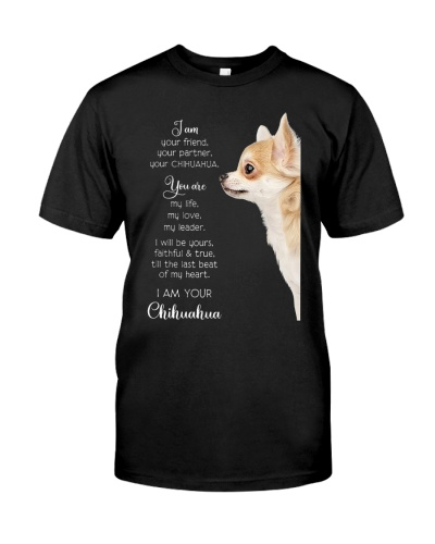 Chihuahua Your Friend