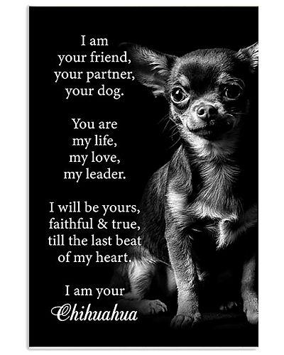 Chihuahua Friend Poster