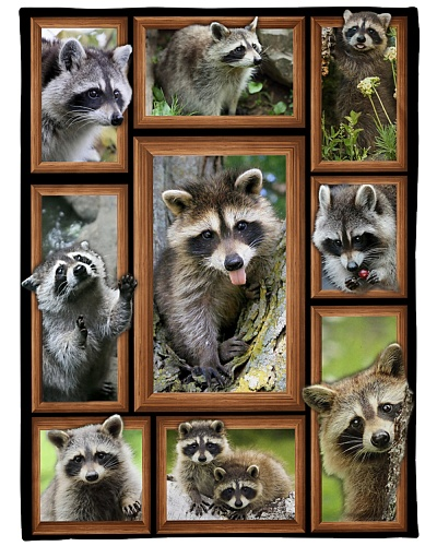New blanket design for Raccoon lovers