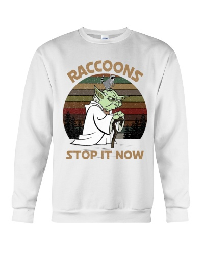 STOP IT NOW RACCOONS