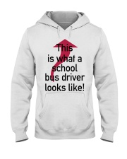 THIS IS WHAT A SCHOOL BUS DRIVER Hooded Sweatshirt front