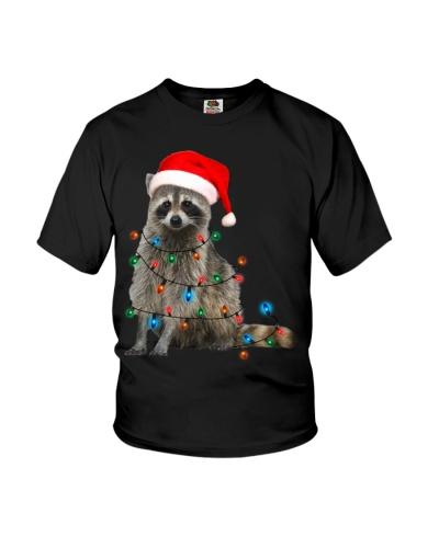 Raccoon Christmas