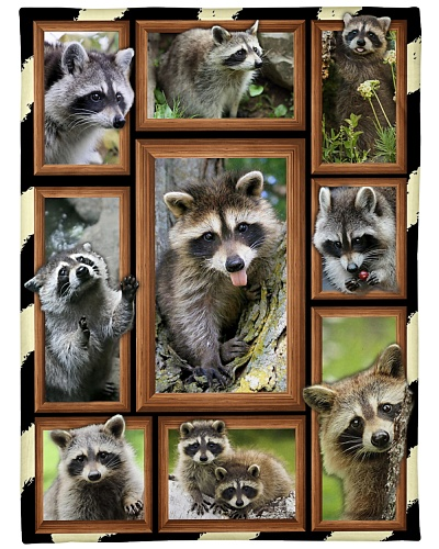 A nice blanket design for Raccoon lovers