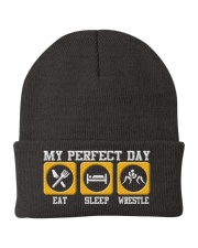 Wrestling My Perfect Day Knit Beanie thumbnail