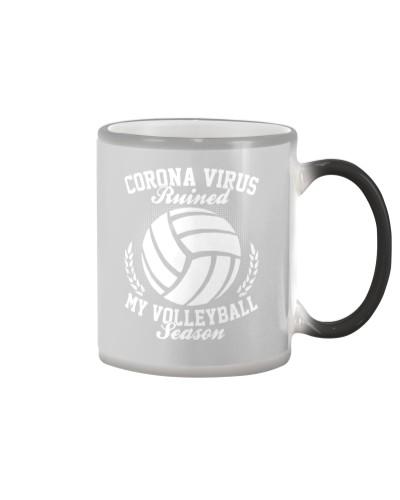 Volleyball Season 2020