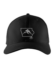 Wrestling Iowa State Roots Embroidered Hat front
