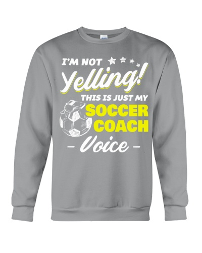 Soccer Player My Soccer Coach Voice