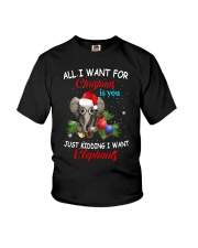 All I want for Christmas I want Elephants shirt Youth T-Shirt thumbnail