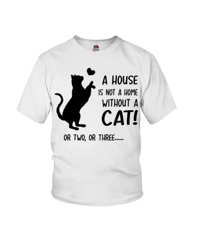 A house is not a home - Cat