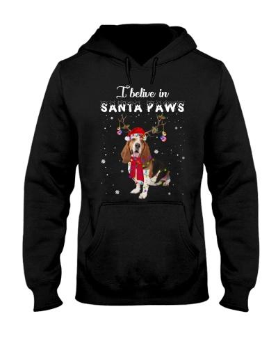 I believe in Stanta Paws Basset Hound Dog