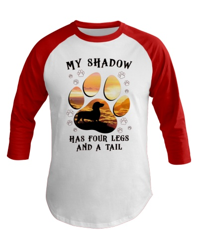 My shadow has four legs