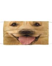 Cute 3D Golden Retriever Cloth face mask front