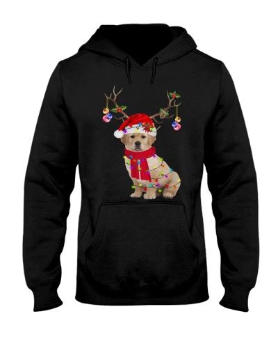 Cute Puppy Golden Retriever Dog