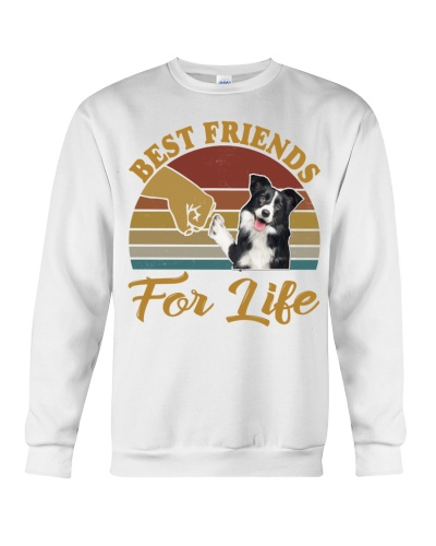 Best friends for Life - Border Collie