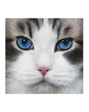 Cute Blue eyes Cat Cloth face mask aos-face-mask-coverlet-lifestyle-front-02