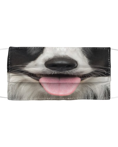 Cute Smiling Border Collie