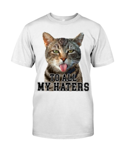 To all my haters - Funny Cat
