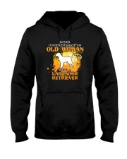 Labrador Retriever4 Hooded Sweatshirt thumbnail