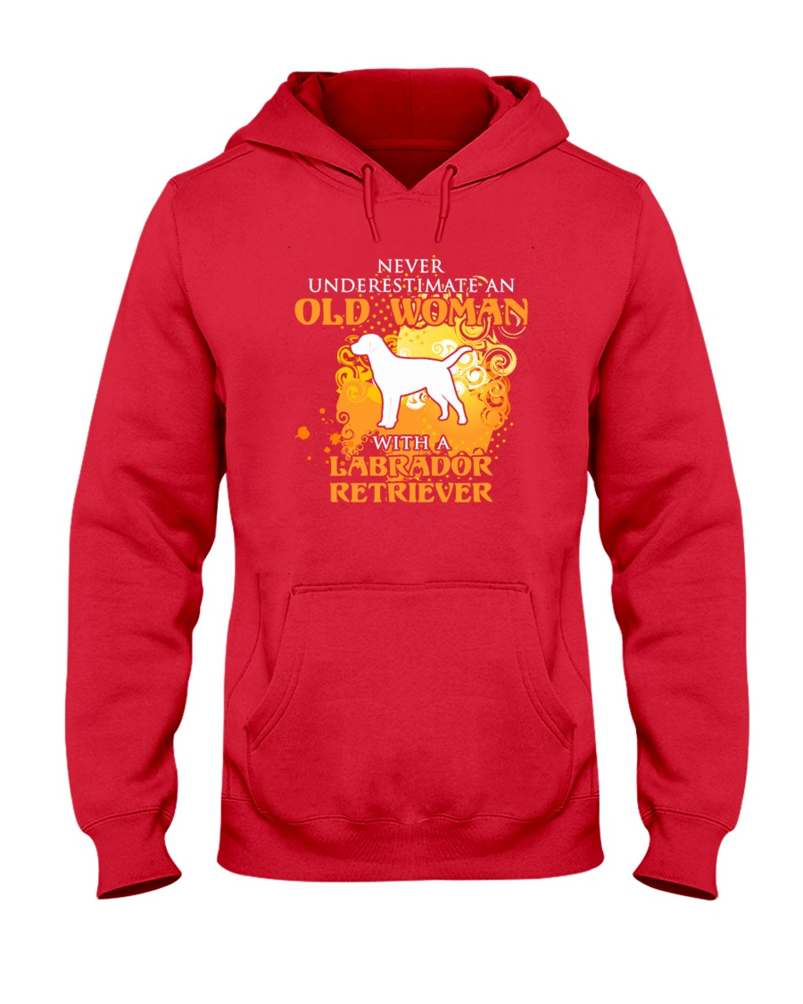 Labrador Retriever4 Hooded Sweatshirt