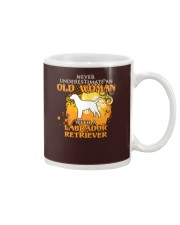 Labrador Retriever4 Mug tile