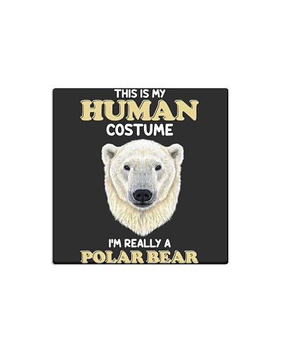 Human costume-Polar Bear