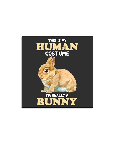 Human custome-Bunny