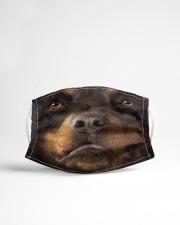 Dog Mask 3 Cloth face mask aos-face-mask-lifestyle-22