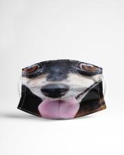 Dog Mask 13 Cloth face mask aos-face-mask-lifestyle-22