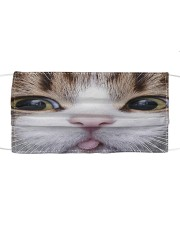 Cat Mask 3 Cloth face mask front