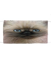 Cat Mask 5 Cloth face mask front