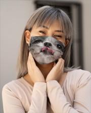 Dog Mask 21 Cloth face mask aos-face-mask-lifestyle-17