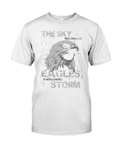 The sky belongs to eagles evanduring storm