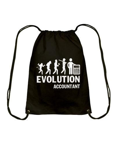 Evolution - Accountant
