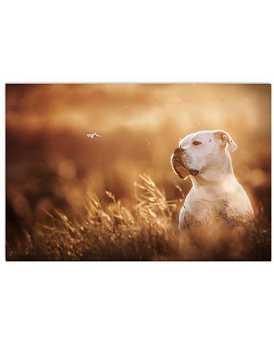 Boxer Dog Poster - Boxer Dog Breeds