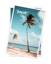 The Beach Collection Sticker - 2 pack (Vertical) thumbnail